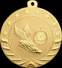 Click this Image to visit the Starbrite Medals category.